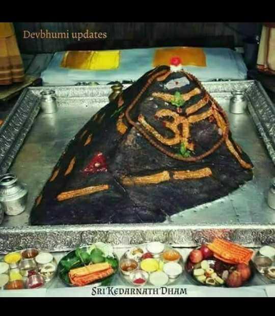 હરહર મહાદેવ - Devbhumi updates SRIKEDARNATH DHAM - ShareChat