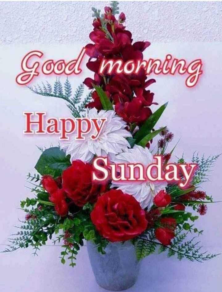 💐 હેપી રવિવાર - Good morning Happy Sunday - ShareChat