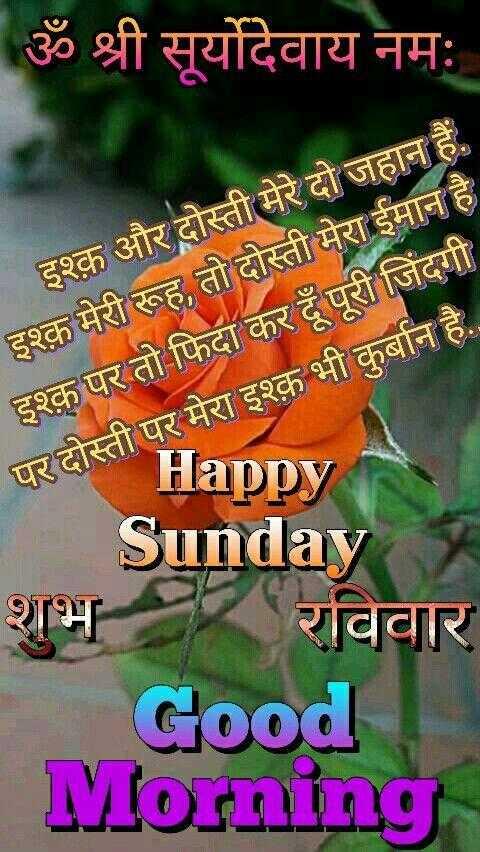 💐 હેપી રવિવાર - ॐ श्री सूर्योदेवाय नमः इश्क़ और दोस्ती मेरे दो जहान हैं . इश्क़ मेरी रूह , तो दोस्ती मेरा ईमान है इश्क़ पर तो फिदा कर दूँ पूरी जिंदगी पर दोस्ती पर मेरा इश्क़ भी कुर्बान है . . परदोस्त HappyN Sunday शुभ र रविवार Good Morning - ShareChat