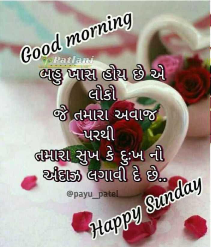 💐 હેપી રવિવાર - Good morning બહુ ખીસી હોય છે એ લોકો જે તમારા અવાજ , - પરથી તમારા સુખ કે દુઃખ નો દાજી લગાવી દે છે . @ payu _ patel Happy Sunday - ShareChat