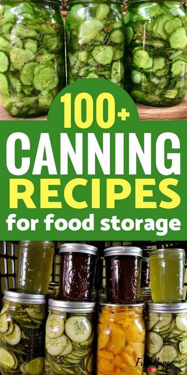 🍊ଆଚାର ଦିବସ - 100 + CANNING RECIPES for food storage Lire - ShareChat