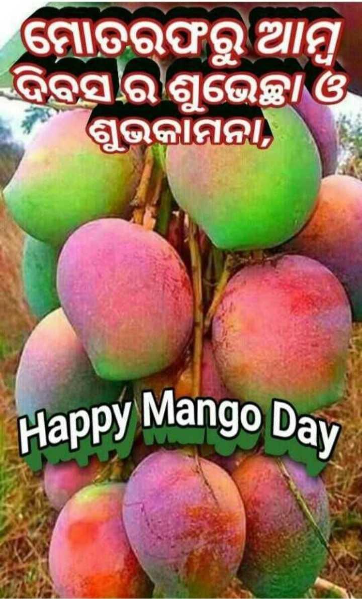 🍋ଆମ୍ବ ଦିବସ - ମୋତରଫରୁ ଆମ୍ବ ଦିବସର ଶୁଭେଚ୍ଛା ଓ ଶୁଭକାମନା Happy Mango Day - ShareChat