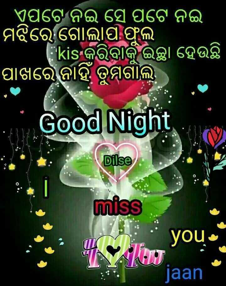 📝ଗୁଡ଼ ନାଇଟ ଶାୟରୀ - ' ଏପଟେ ନଇ ସେ ପଟେ ନଇ ମଝିରେ ଗୋଲାପ ଫୁଲ । kisକରିବାକୁ ଇଚ୍ଛା ହେଉଛି ପାଖରେ ନାହିଁ ତୁମଗାଲ । Good Night Dilse miss : a YOU jaan - ShareChat