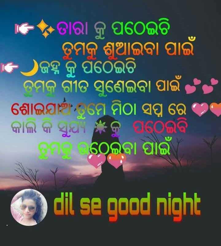 📝ଗୁଡ଼ ନାଇଟ ଶାୟରୀ - + ତାରା କୁ ପଠେଇଚି । ତମକୁ ଶୁଆଇବା ପାଇଁ ଜହ୍ନ କୁ ପଠେଇଚି । । ତମକୁ ଗୀତ ସୁଣେଇବା ପାଇଁ ଶୋଇଯା , ମେ ମିଠା ସଫ୍ଟ ରେ । କାଲି କି ସୁଣ କୁ ପଠେଇବି । ତମ ଠେଇବା ପାଇଁ । dil se good night - ShareChat