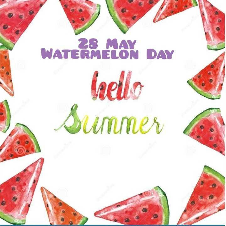 🍉ତରଭୁଜ ଦିବସ - dreamstime WATERMELOK DAY hello Summer - ShareChat
