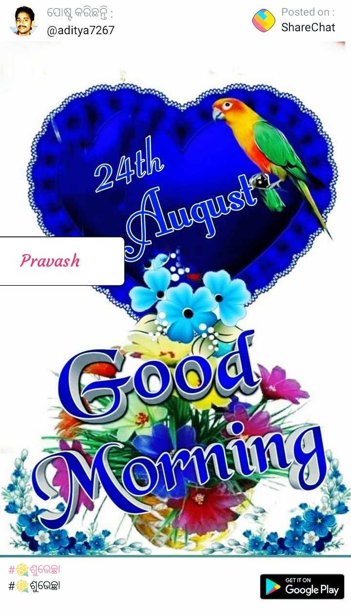 👍🏼ଥ୍ୟାଙ୍କ ୟୁ - ପୋଷ୍ଟ କରିଛନ୍ତି : @ aditya7267 Posted on : ShareChat 24th duqust Pravash Good Morning # # 616081 660 GET IT ON Google Play - ShareChat