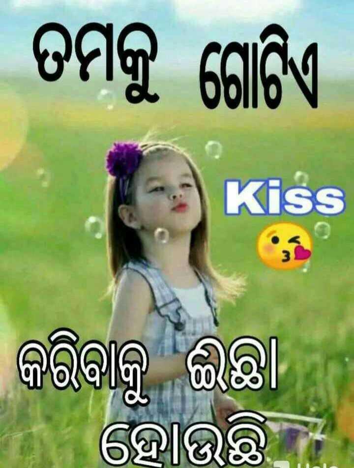 😍ପ୍ରପୋଜ ଡାଇଲଗ - । ତମକୁ ଗୋଟିଏ । Kiss କରିବାକୁ ଇଛା ନ ହୋଉଛି । - ShareChat
