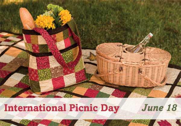 🛤ବିଶ୍ୱ ପିକନିକ ଦିବସ - 00 FOOD International Picnic Day June 18 - ShareChat