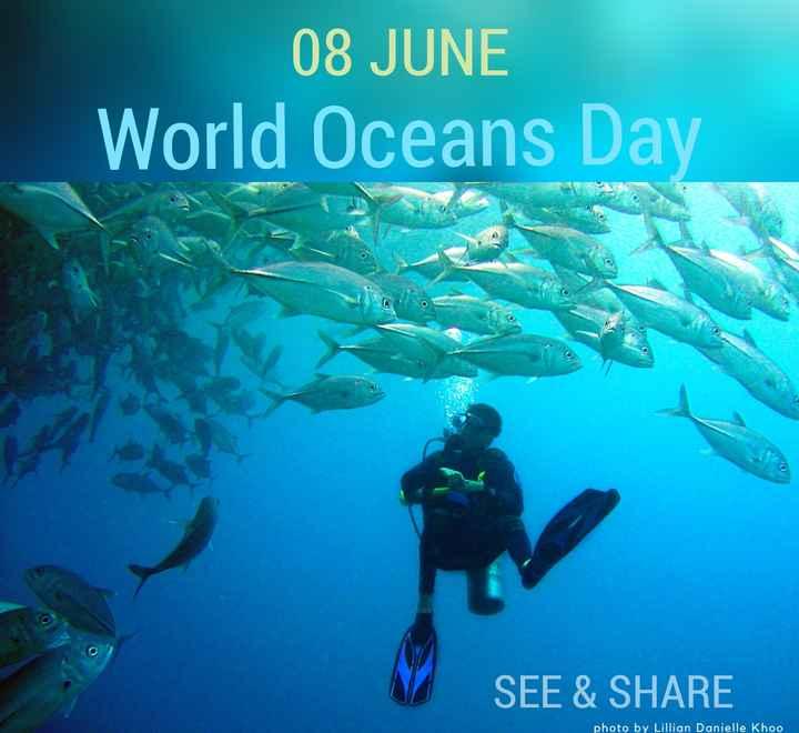 💧ବିଶ୍ୱ ମହାସାଗର ଦିବସ - 08 JUNE World Oceans Day SEE & SHARE photo by Lillian Danielle Khoo - ShareChat