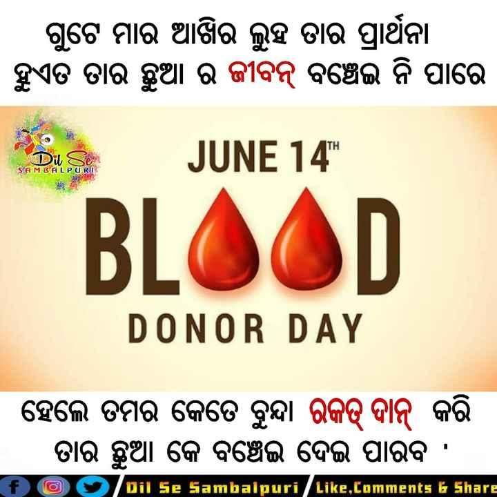 🛑ବିଶ୍ୱ ରକ୍ତ ଦାତା ଦିବସ - ଗୁଟେ ମାର ଆଖିର ଲୁହ ତାର ପ୍ରାର୍ଥନା । । ହୁଏତ ତାର ଛୁଆ ର ଜୀବନ୍ ବଞ୍ଚେଇ ନି ପାରେ ITH 39 JUNE 14 SAMBALPURI BLOOD DONOR DAY । ହେଲେ ତମର କେତେ ବୁନ୍ଦା ରକତ୍ ଦାନ୍ କରି | ତାର ଛୁଆ କେ ବଞ୍ଚେଇ ଦେଇ ପାରିବ । f O Dil Se Sambalpuri / Like , Comments & Share - ShareChat