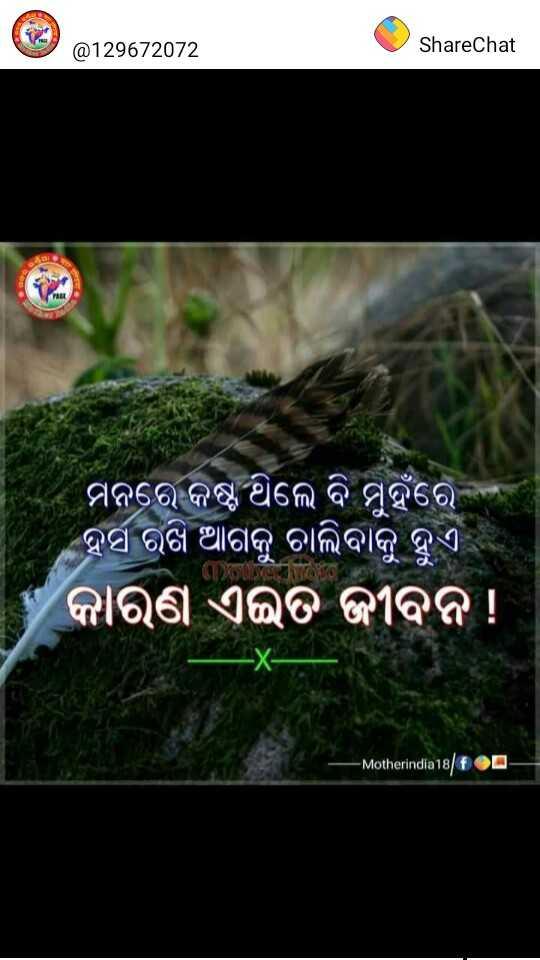 💔ବ୍ରେକଅପ୍ ଶାୟରୀ - @ 129672072 ShareChat ମନରେ କଷ୍ଟ ଥିଲେ ବି ମୁହଁରେ | ହସ ରଖି ଆଗକୁ ଚାଲିବାକୁ ହୁଏ କାରଣ ଏଇତ ଜୀବନ ! - Motherindia18fOQ - ShareChat