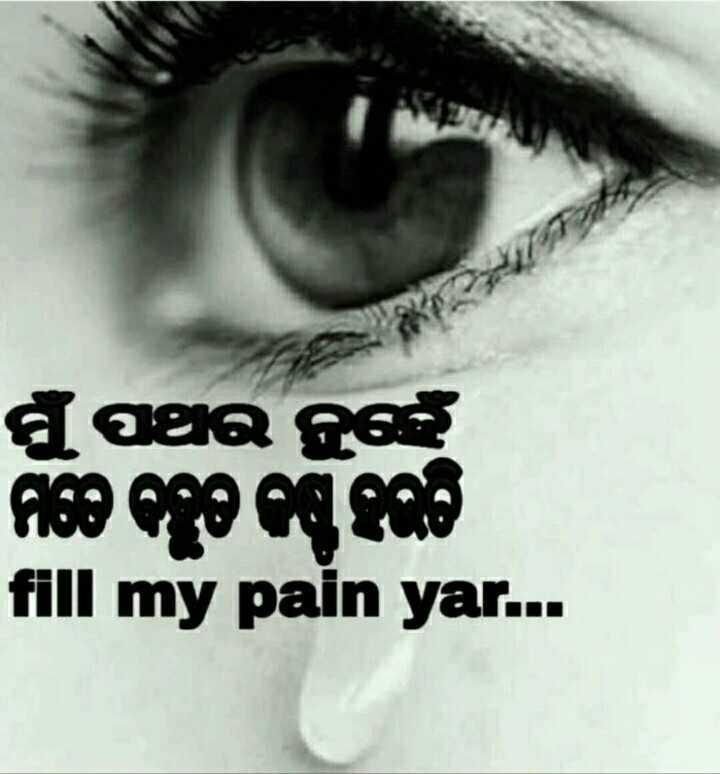 💔ବ୍ରେକଅପ୍ ଶାୟରୀ - ମୁଁ ଥର ଜଣେ ତେ ତ ତ fill my pain yar . . . - ShareChat