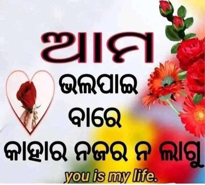 🤩ଲଭ ଜୋକ୍ସ - ଆମ ଭଲପାଇ ବାରେ କାହାର ନଜର ନ ଲାଗୁ । ଭଲପା you is my life . - ShareChat