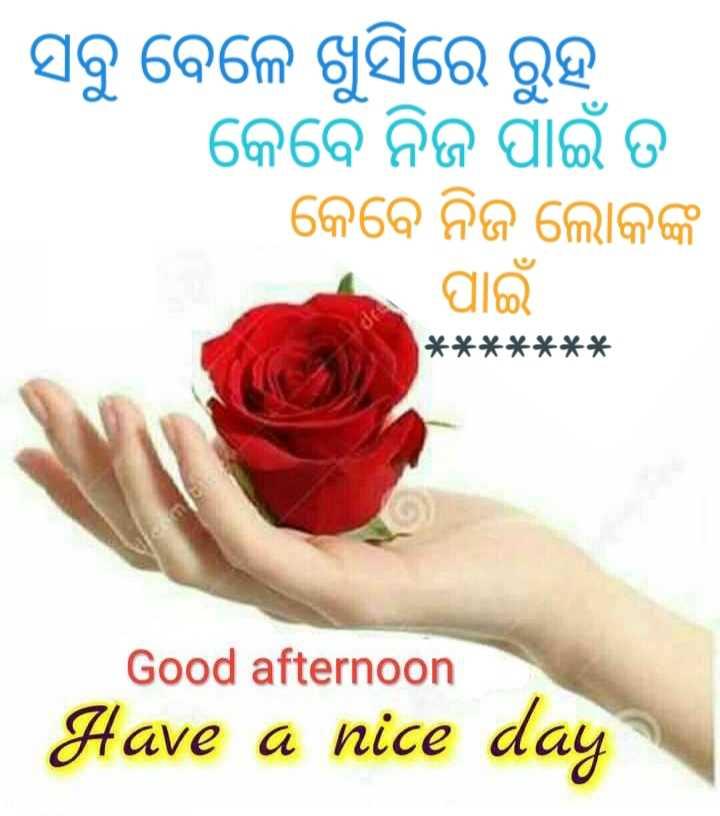 🌇ଶୁଭ ଅପରାହ୍ନ - । ସବୁ ବେଳେ ଖୁସିରେ ରୁହ । କେବେ ନିଜ ପାଇଁ ତ କେବେ ନିଜ ଲୋକଙ୍କ । ପାଇଁ । * * * * * * * Good afternoon Have a nice day - ShareChat