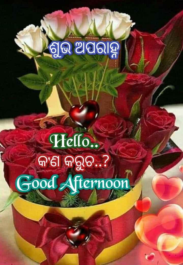 🌇ଶୁଭ ଅପରାହ୍ନ - ଶୁଭ ଅପରାହ୍ନ Hello . . କଣ କରୁଚ . . ? Good Afternoon - ShareChat