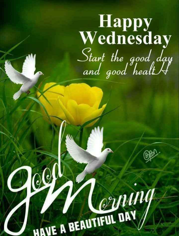🌸ଶୁଭ ବୁଧବାର - Happy Wednesday Start the good day and good health qoof OYUNG HAVE A BEAUTIFUL DAY - ShareChat