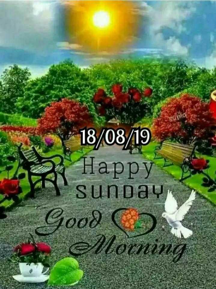 💐ଶୁଭ ରବିବାର - 18 / 08 / 19 Happy sunday Good co Morning - ShareChat