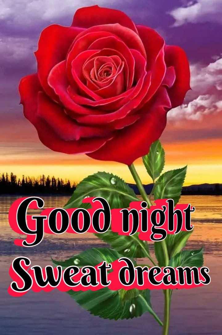 🌛ଶୁଭରାତ୍ରୀ - Good night Sweat dreams - ShareChat