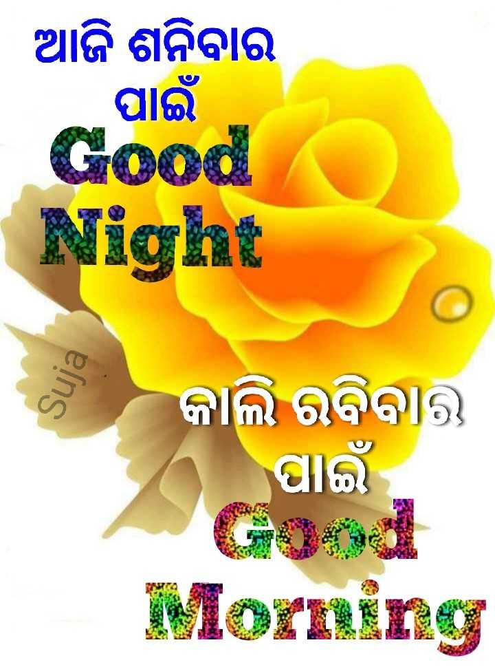 🌛ଶୁଭରାତ୍ରୀ - ଆଜି ଶନିବାର ପାଇଁ O Night Suja କାଲି ରବିବାର ପାଇଁ Morning - ShareChat