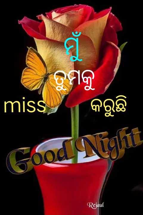 🌛ଶୁଭରାତ୍ରୀ - ତୁମକୁ miss କରୁଛି Good Night Rejaul - ShareChat