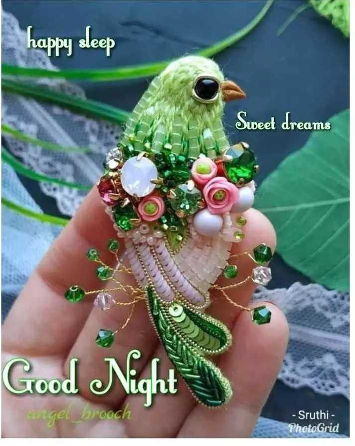 🌛ଶୁଭରାତ୍ରୀ - happy sleep Sweet dreams www Good Night – gel _ brooch - Sruthi - PhotoGrid - ShareChat