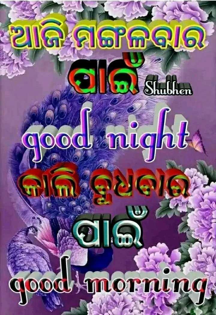 🌛ଶୁଭରାତ୍ରୀ - ଆଜି ମଙ୍ଗଳବାର TILA hubhen good night କାଲି ଭାରି oung - ShareChat