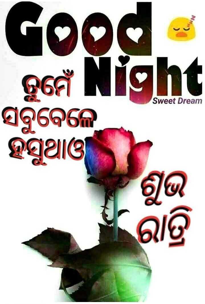 🌛ଶୁଭରାତ୍ରୀ - Good gee Night ହସୁଥାଓ Sweet Dream ସବୁବେଳେ ' ରାତ୍ରି - ShareChat