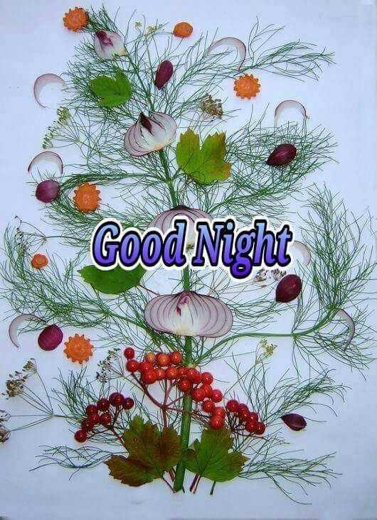 🌛ଶୁଭରାତ୍ରୀ - Good Night CON - ShareChat