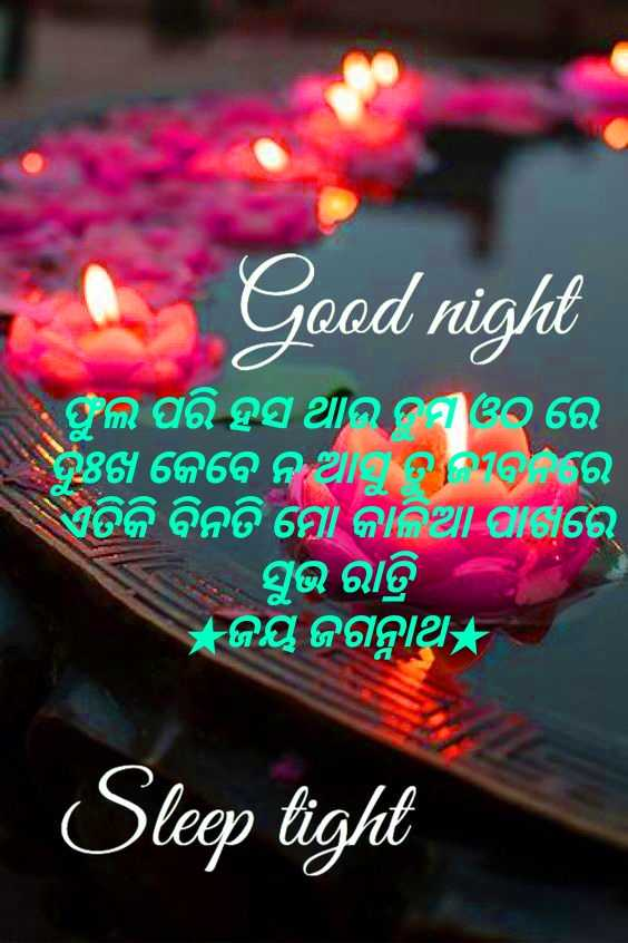 🌛ଶୁଭରାତ୍ରୀ - Good night ଫୁଲ ପରି ହସ ଥାଉ ଦ୩୦ ରେ ତୁଖ କେବେ ନ ଆତବରେ ଏତିକି ବିନତି ମୋ କାଳିଆ ପାରେ । । ସୁଭ ରାତ୍ରି ଜୟ ଜଗନ୍ନାଥ Sleep tight - ShareChat