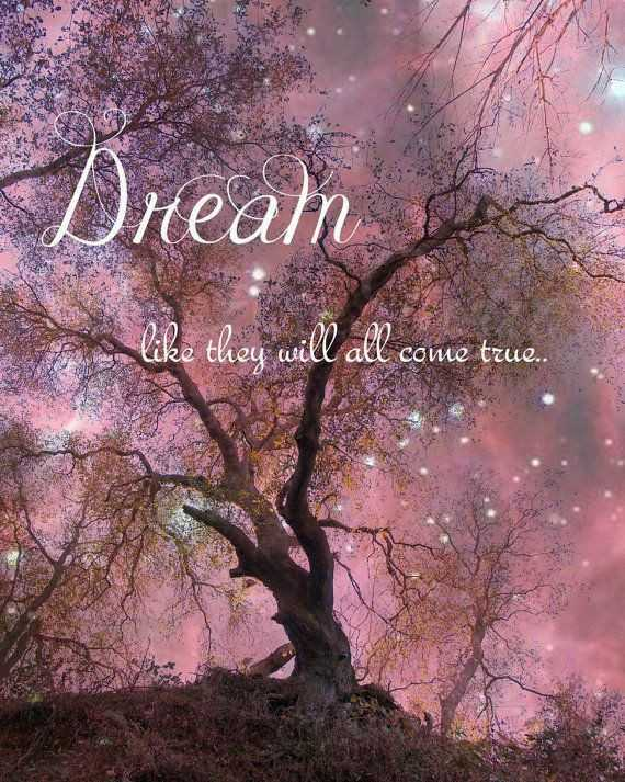 🌛ଶୁଭରାତ୍ରୀ - Dreain like they will all come true . . - ShareChat