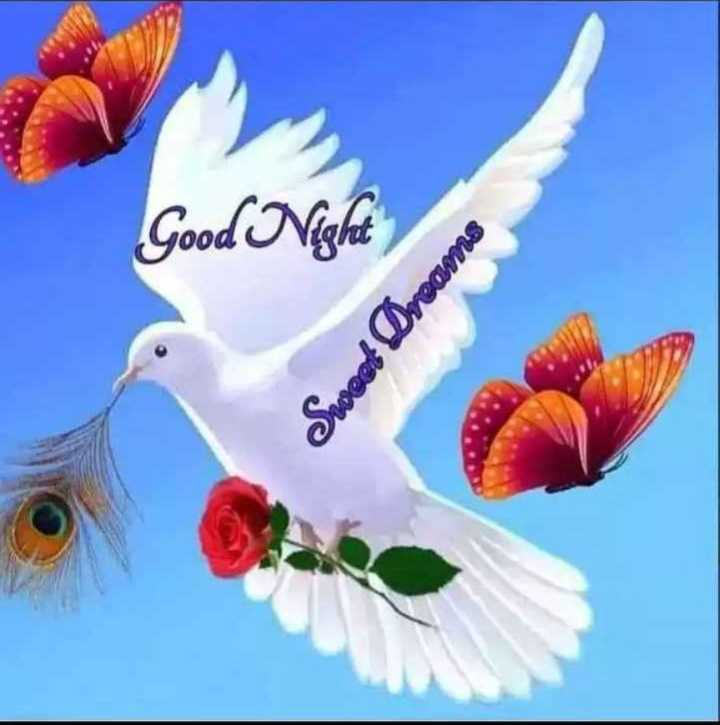 🌛ଶୁଭରାତ୍ରୀ - Good Night Sweet Dreams - ShareChat