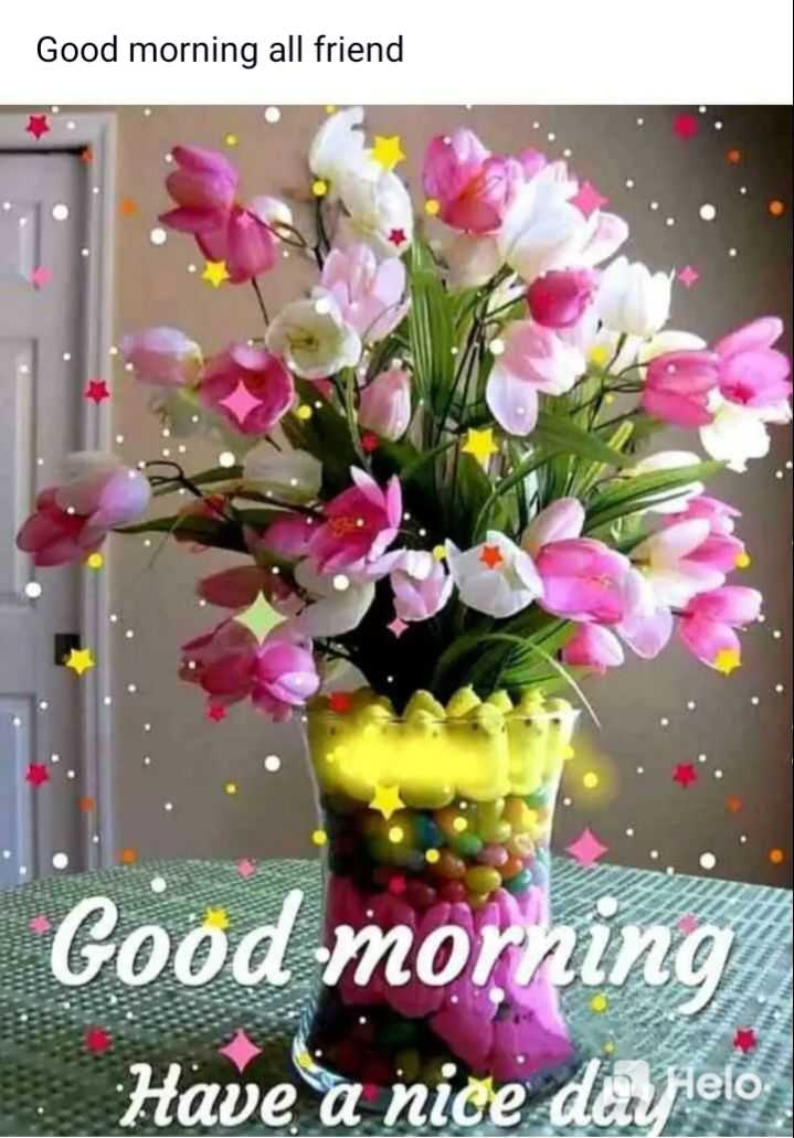 🌻ଶୁଭ ଶୁକ୍ରବାର - Good morning all friend Good morning Have a nice day pelo - ShareChat