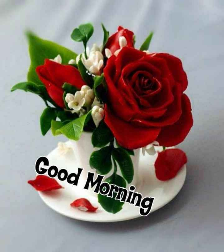 🌻ଶୁଭ ଶୁକ୍ରବାର - Bujima Good Morning - ShareChat