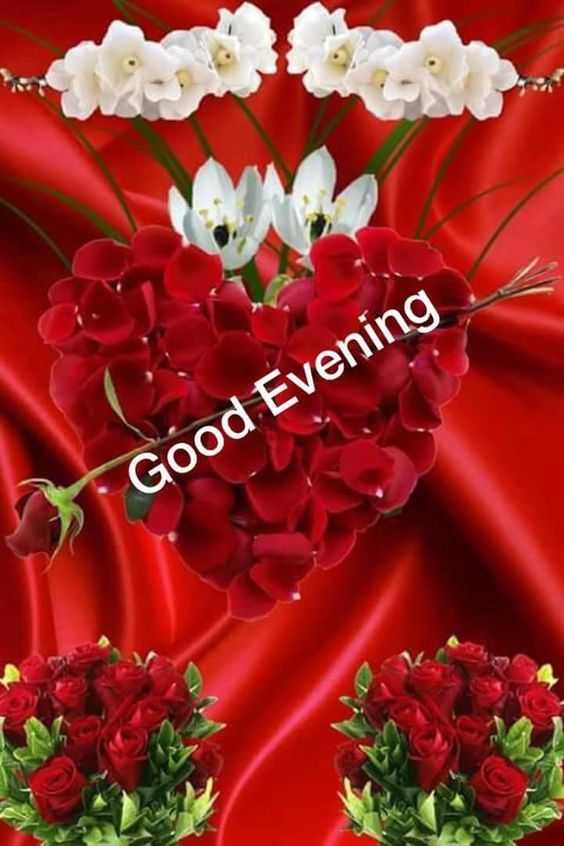 🌆ଶୁଭ ସଂନ୍ଧ୍ୟା - * Good Evening - ShareChat