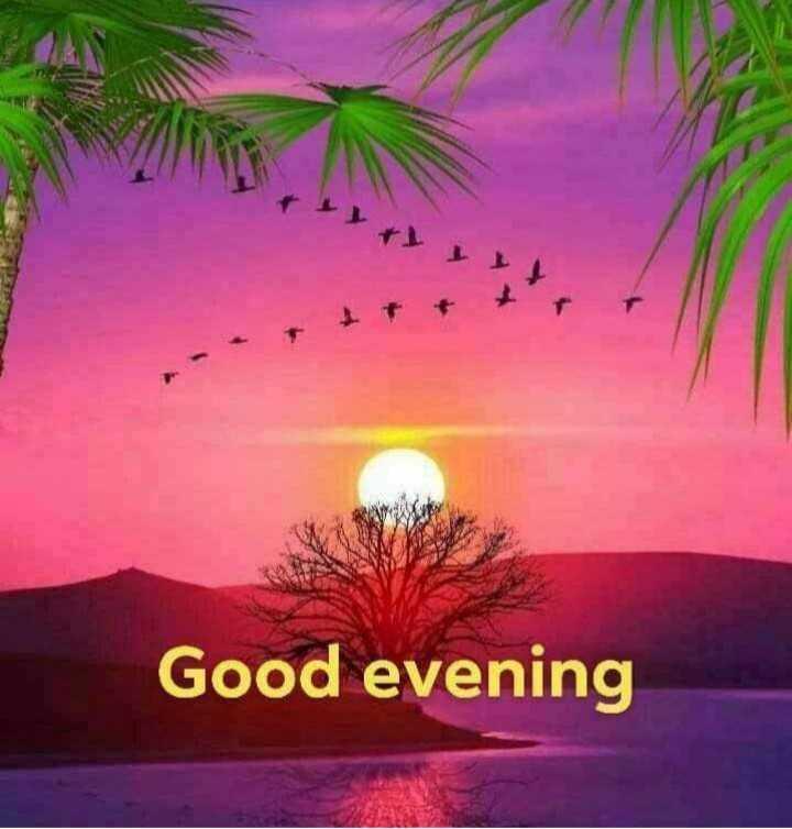 🌆ଶୁଭ ସଂନ୍ଧ୍ୟା - + Good evening - ShareChat