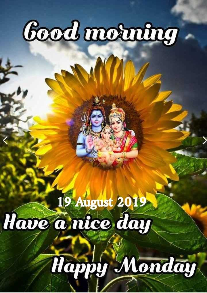 💐ଶୁଭ ସୋମବାର - Good morning 19 August 2019 Have a nice day Happy Monday - ShareChat