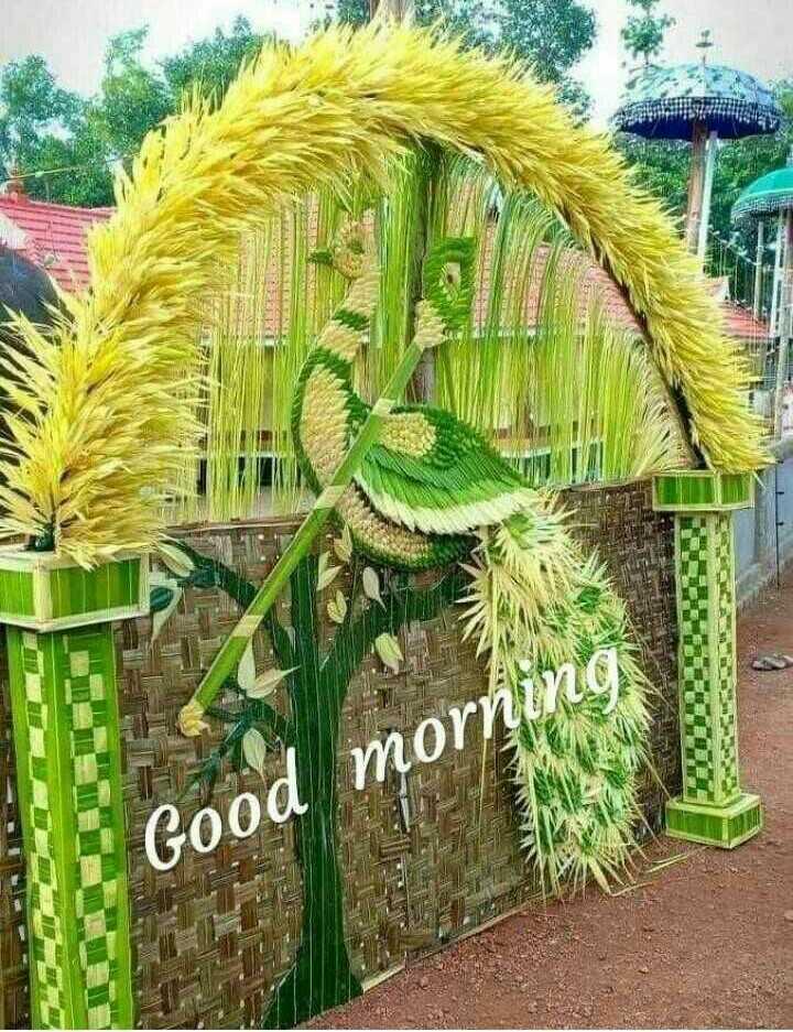 💐ଶୁଭେଚ୍ଛା - Good morn - ShareChat
