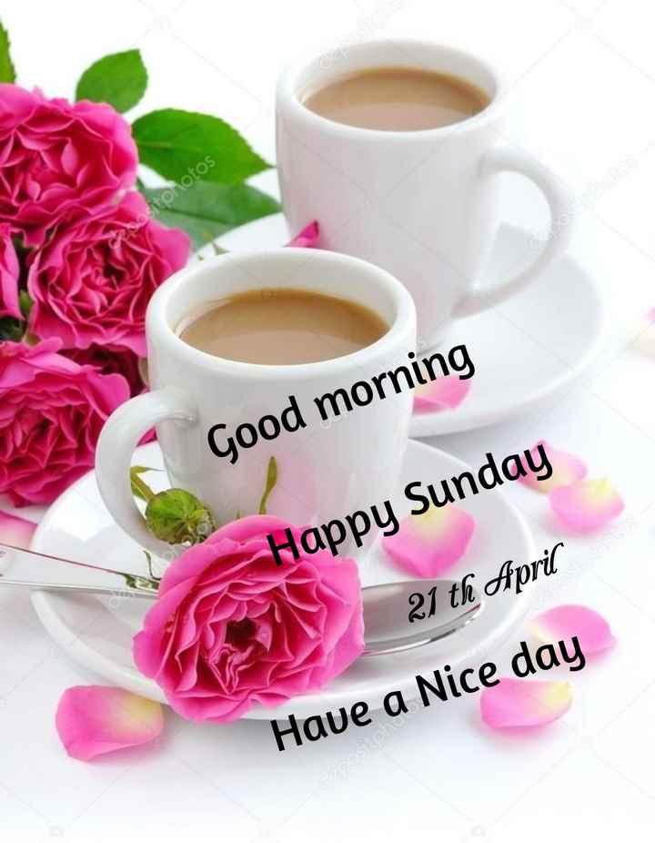 💐ଶୁଭେଚ୍ଛା - ositphotos Good morning Happy Sunday 21 th April Have a Nice day - ShareChat
