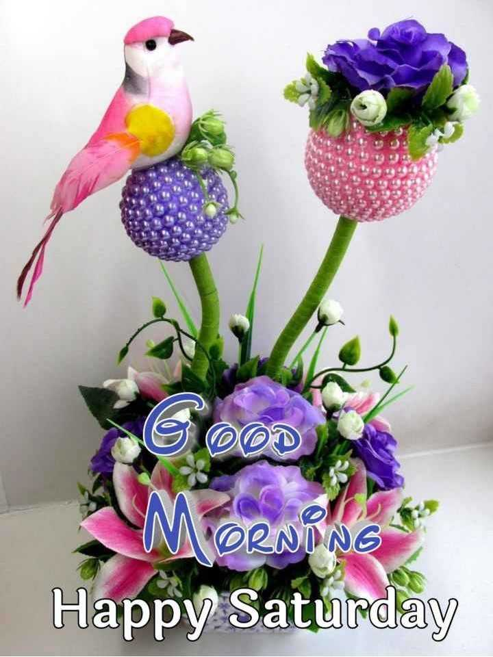 💐ଶୁଭେଚ୍ଛା - DOD MORNING Happy Saturday - ShareChat