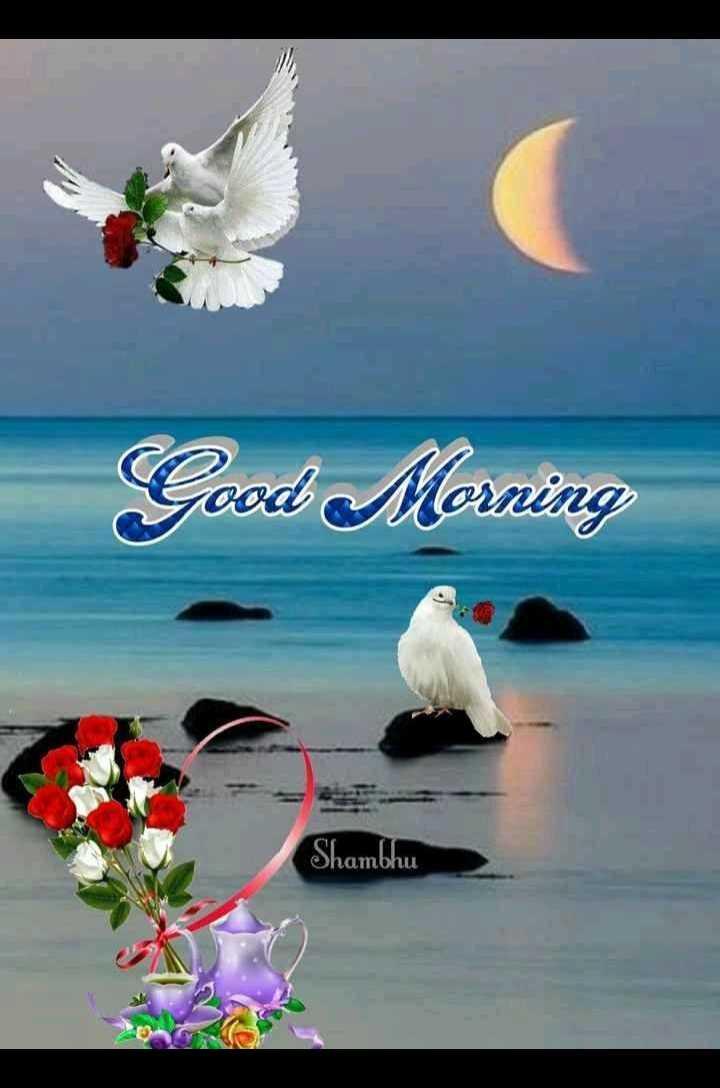 💐ଶୁଭେଚ୍ଛା - Good Morning Shambhu ambhu - ShareChat