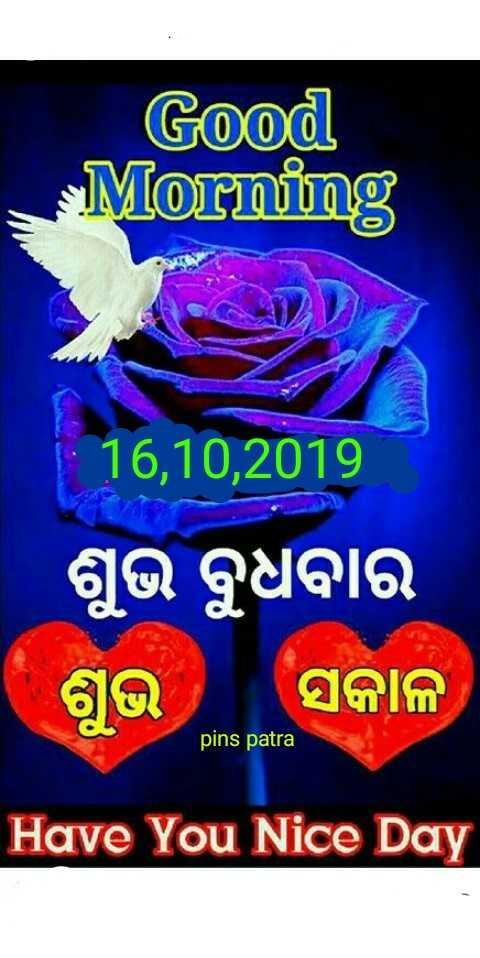 💐ଶୁଭେଚ୍ଛା - Good Morning 16 , 10 , 2019 ଶୁଭ ବୁଧବାର । ଶୁଭ ସକାଳ pins patra Have You Nice Day - ShareChat