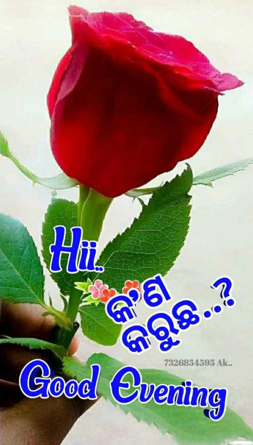 💐ଶୁଭେଚ୍ଛା - ss କଣ କରୁଛି . . ? 7326854595 Ak . . Good Evening - ShareChat