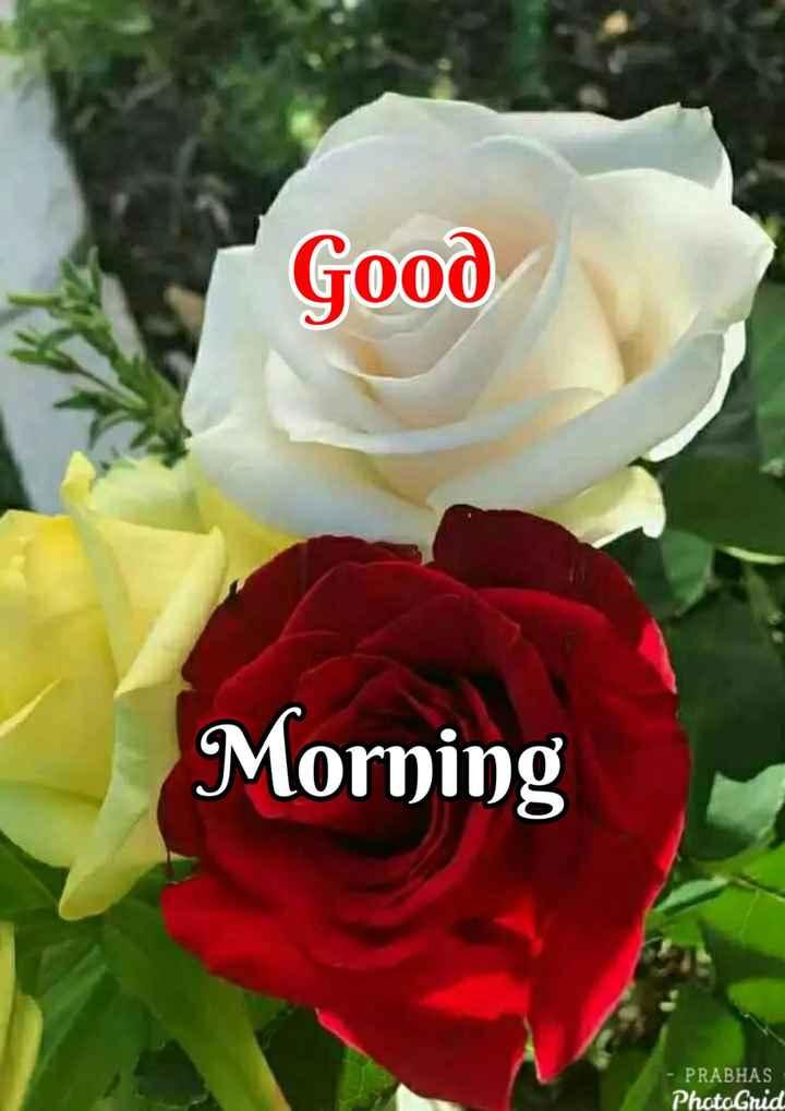 💐ଶୁଭେଚ୍ଛା - Good Morning - PRABHAS PhotoGrid - ShareChat