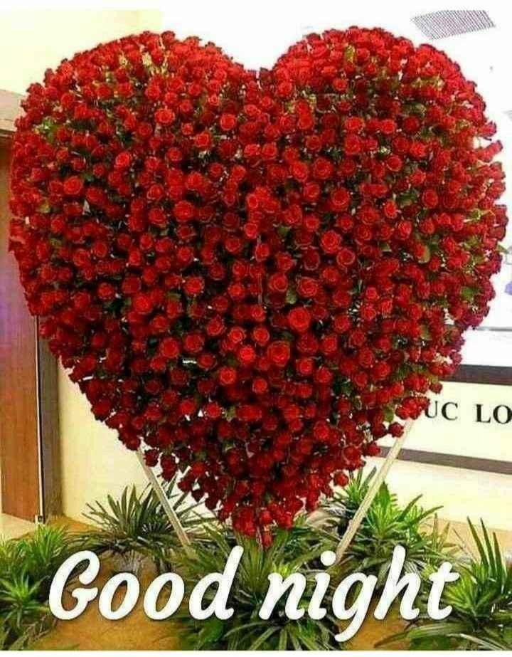 💐ଶୁଭେଚ୍ଛା - UC LO Good night - ShareChat