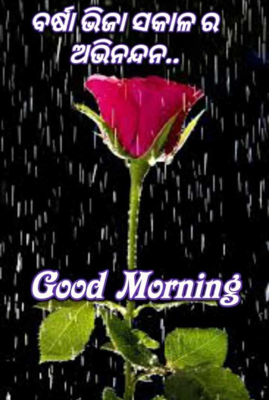 🌞ସୁପ୍ରଭାତ - ବର୍ଷାଭିଜା ସକାଳ ର   ଅଭିନନ୍ଦନ . . . । ' Good Morning - ShareChat