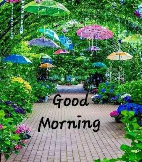 🌞ସୁପ୍ରଭାତ - DIL Good Morning - ShareChat