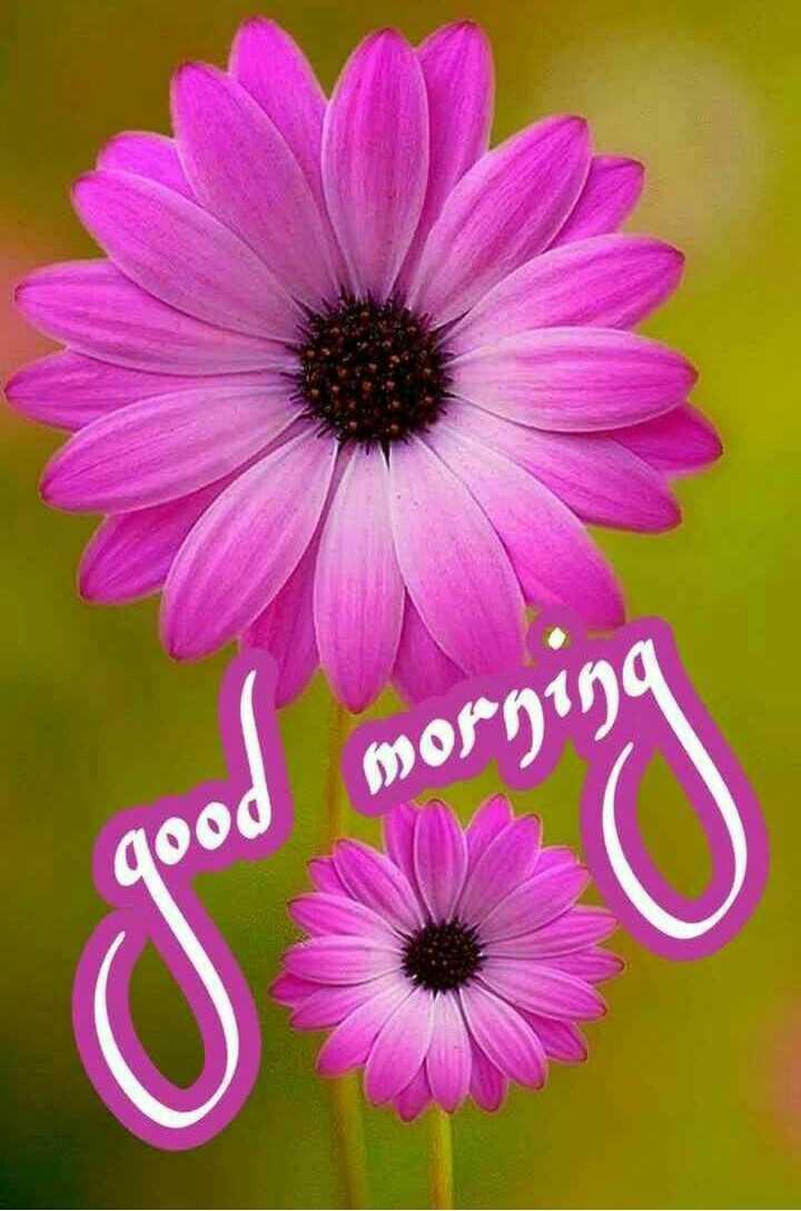 🌞ସୁପ୍ରଭାତ - morning qood - ShareChat