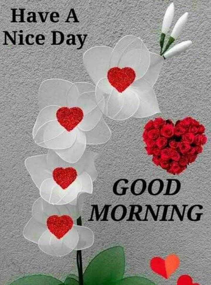 🌞ସୁପ୍ରଭାତ - Have A Nice Day GOOD MORNING - ShareChat