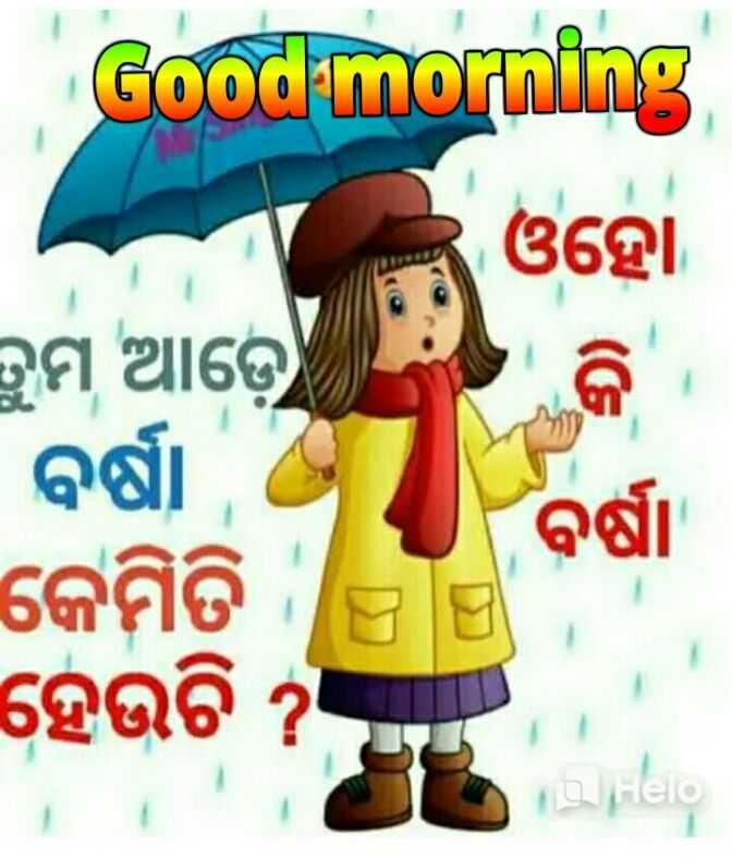 🌞ସୁପ୍ରଭାତ - Good morning ଓହୋ ତୁମ ଆଡ଼େ । ବର୍ଷା ବର୍ଷ କେମିତି ହେଉଚି ? - ShareChat