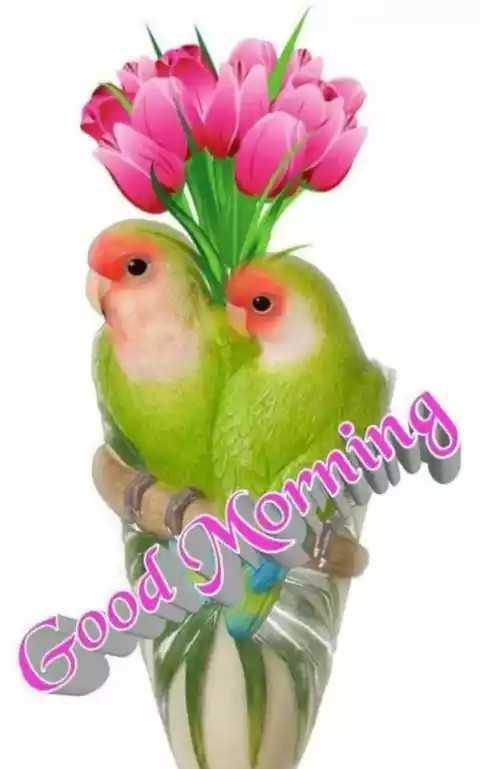 🌞ସୁପ୍ରଭାତ - Good Morni - ShareChat